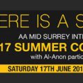 Mid Surrey Intergroup Convention 2017