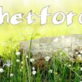 Thetford Camp
